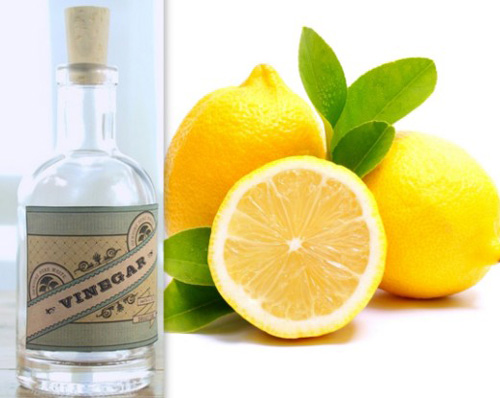 Vinegar-and-Lemon-Juice1