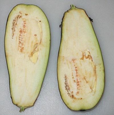 Eggplant-sliced